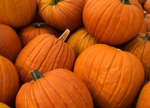 Allow yourself to enjoy this relaxing Pumpkin Cream Body Wrap to hydrate you entire being into a silky and smooth radiant body.